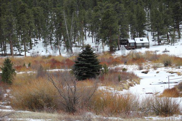 Estes Park Winter
